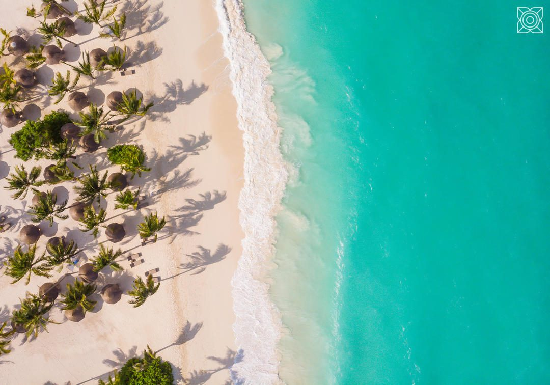 beach with turquoise waters, white sand and palm trees shown from above