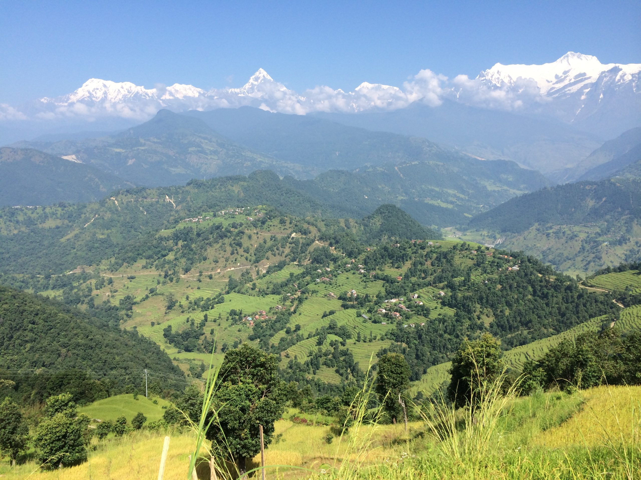looking down into the Pokhara valley over terraced rice fields and trees