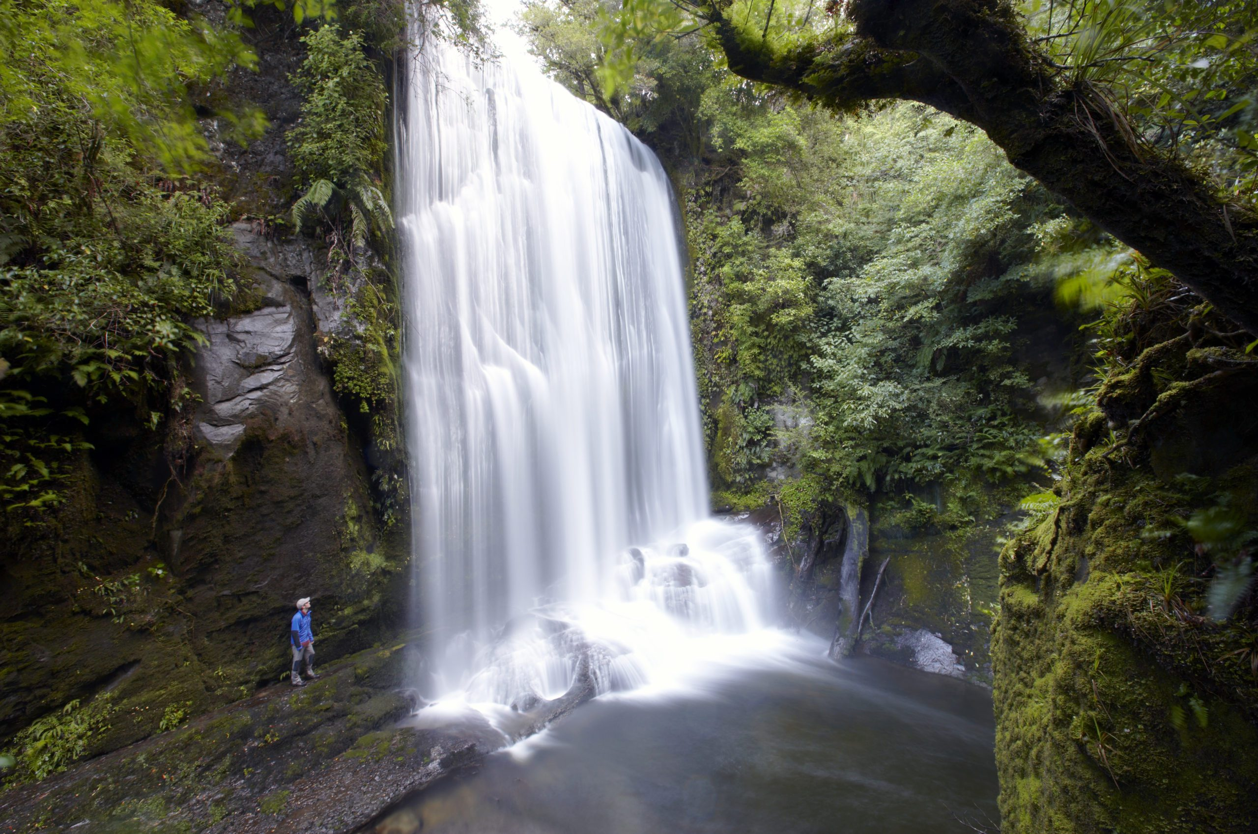 person standing next to a large waterfall along the Lake Waikaremoana track