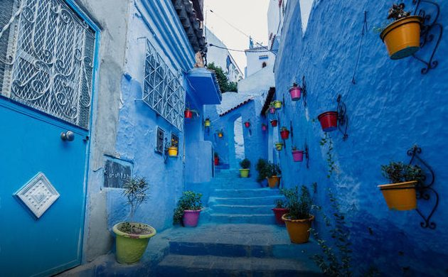 Blue wash building in Chefchaouen with flower pots