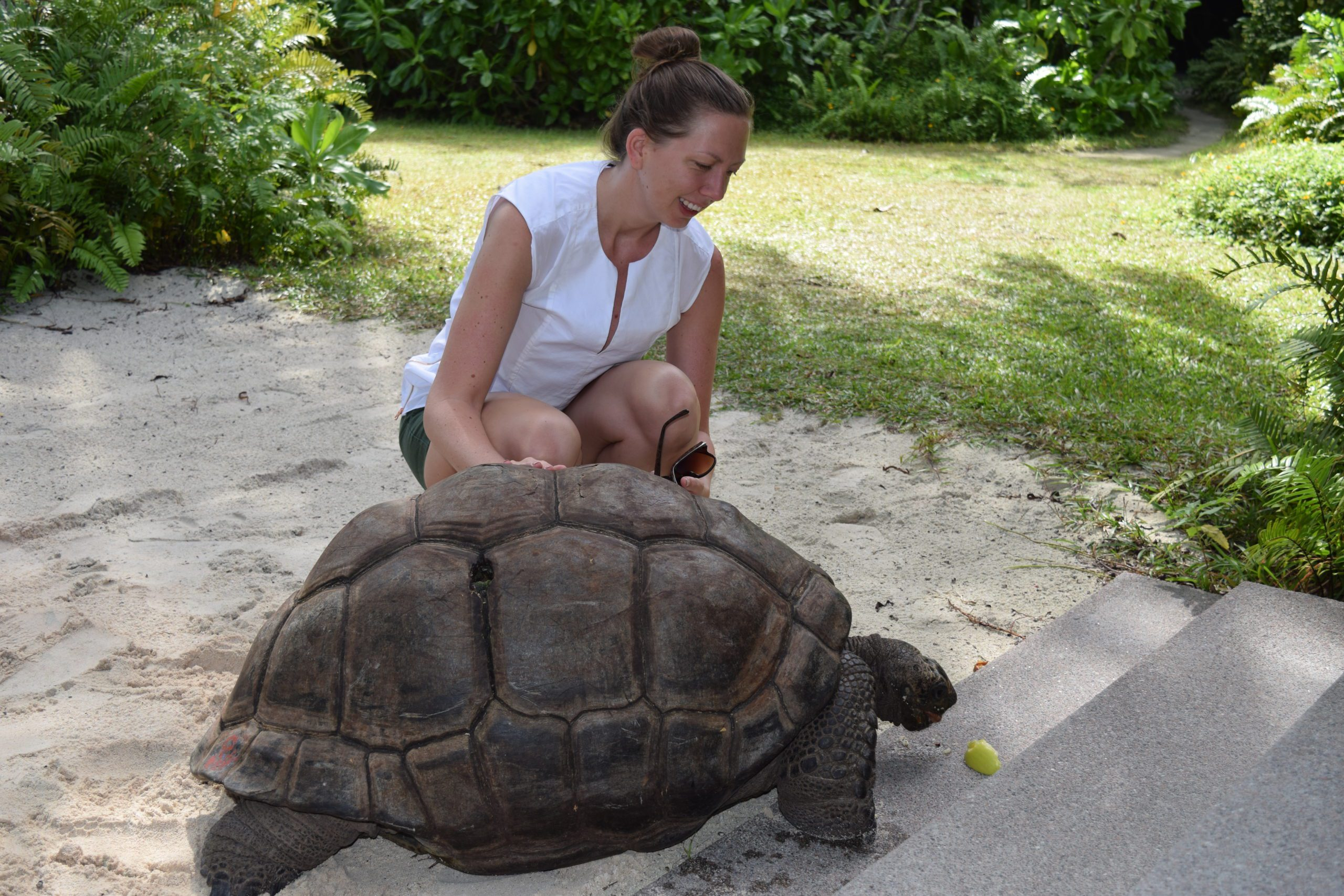 woman visiting with tortoise