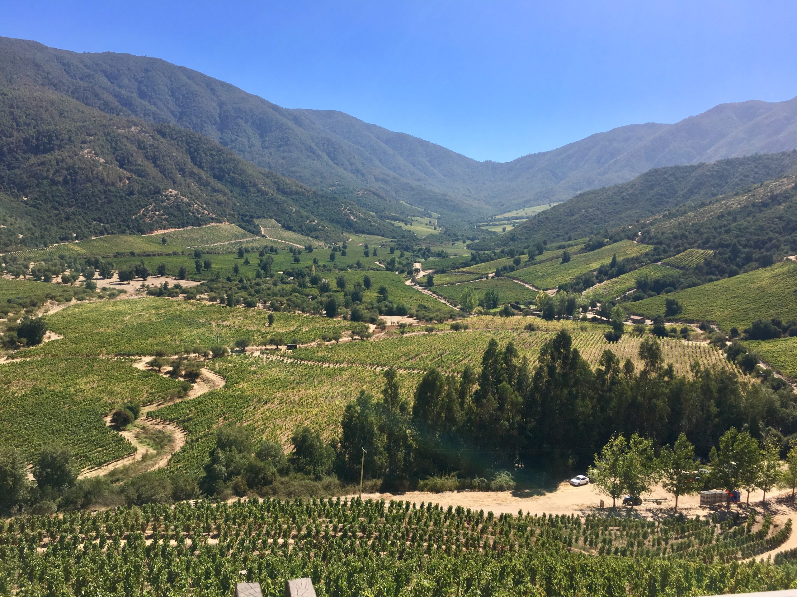 view overlooking a valley with trees and mountains in Colchagua