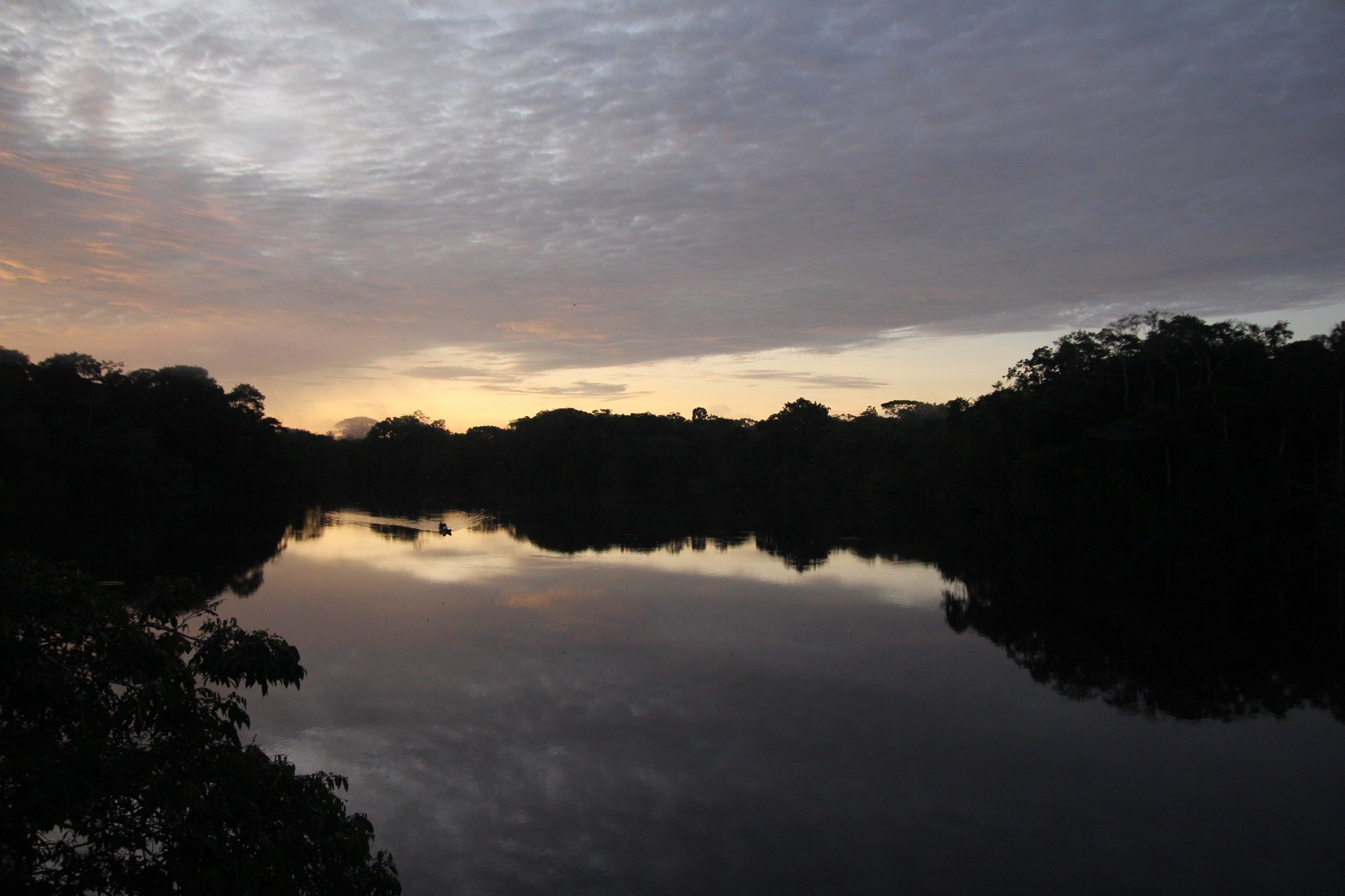 Amazon waters at sunset, Ecuador