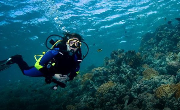 Diver in Marsa Alam next to coral reef in blue waters