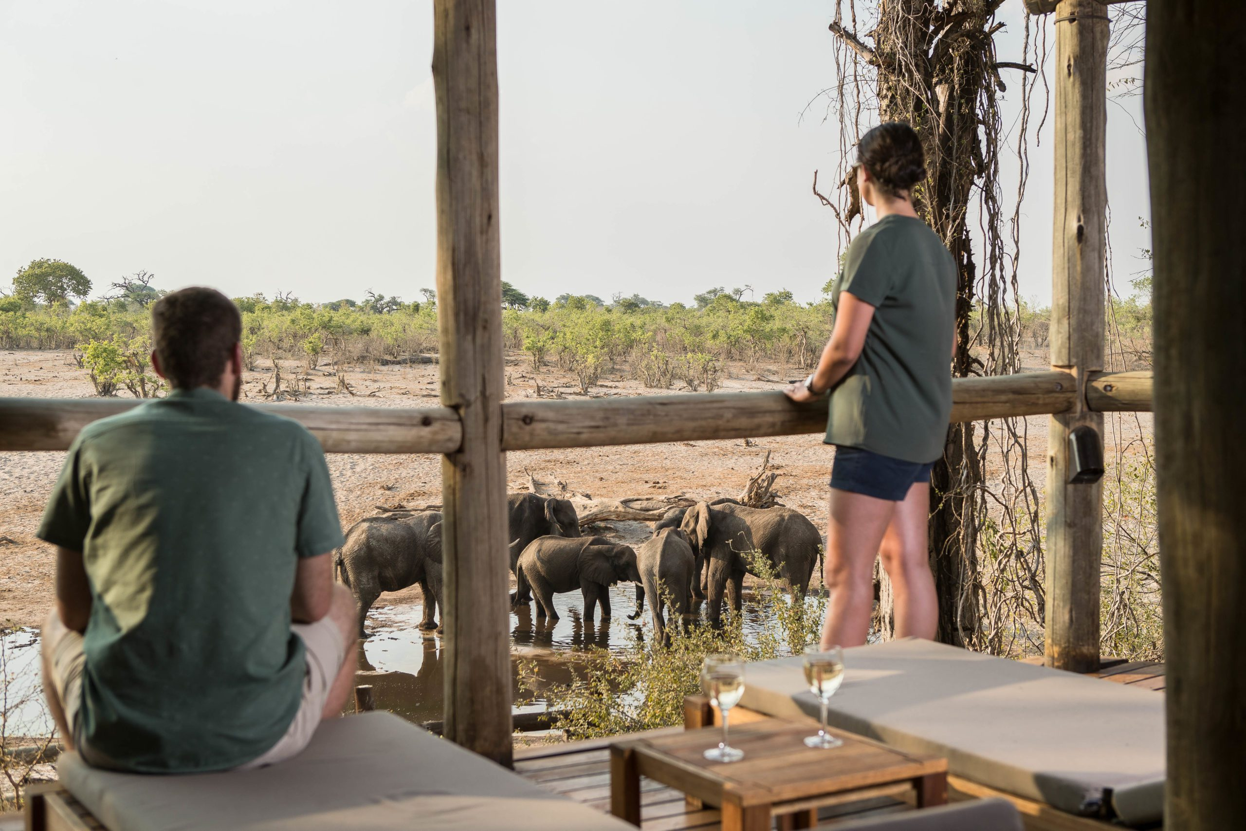Savute Safari Camp guests at main area observing elephants at the watering hole