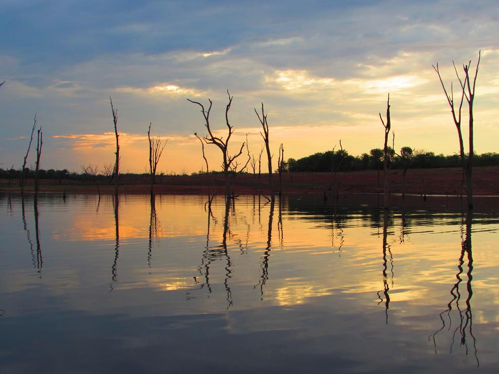 sunset on Lake Kariba with dead trees