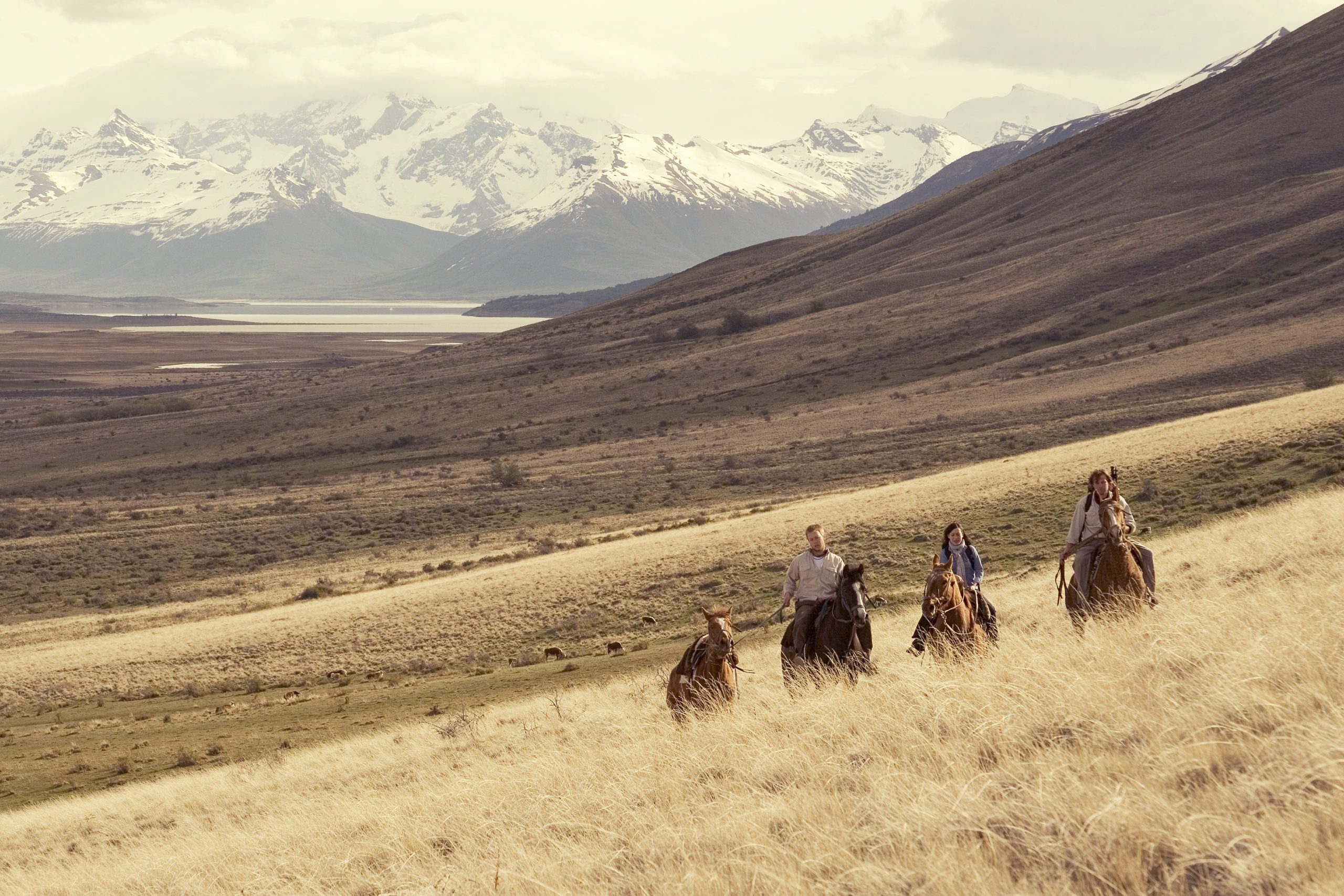 four people on horseback in a grassy field with mountains in the background