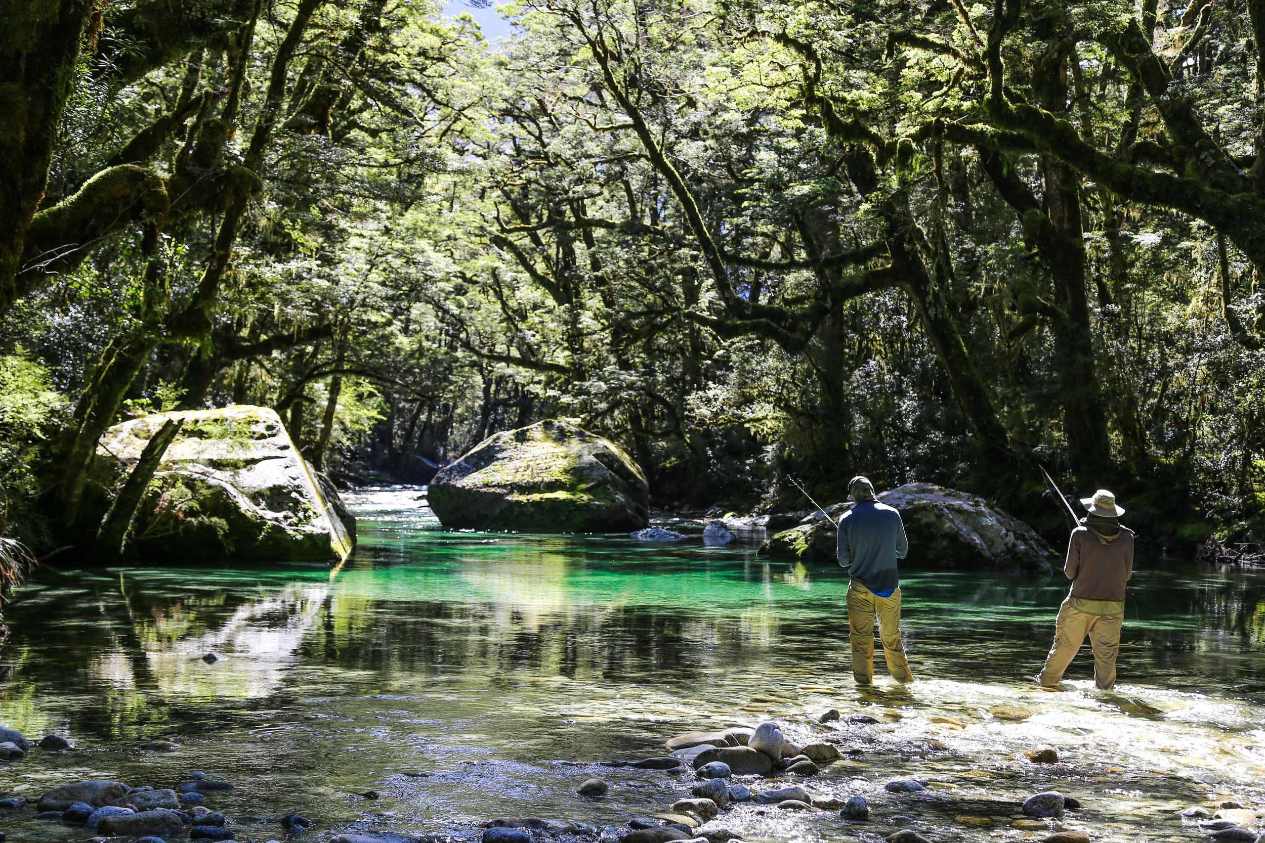 two people fly fishing in a clear stream covered by trees at minaret station