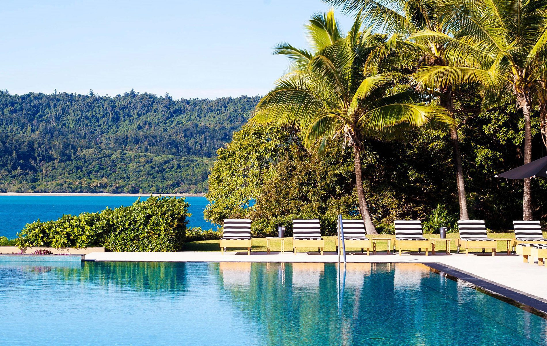 swimming pool overlooking the ocean and palm trees seen on Australia safari