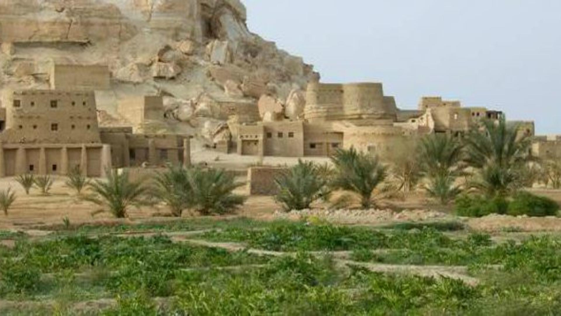 buildings carved from the mountain behind a verdant green oasis in the deserts of egypt on a North Africa & Middle East safari