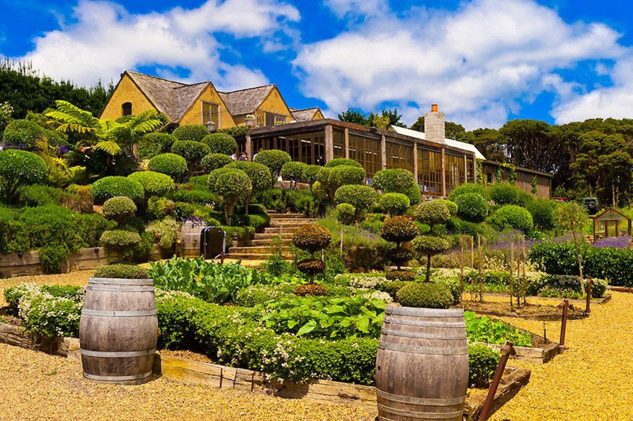 winery on waiheke island on a clear sunny day on New Zealand tour