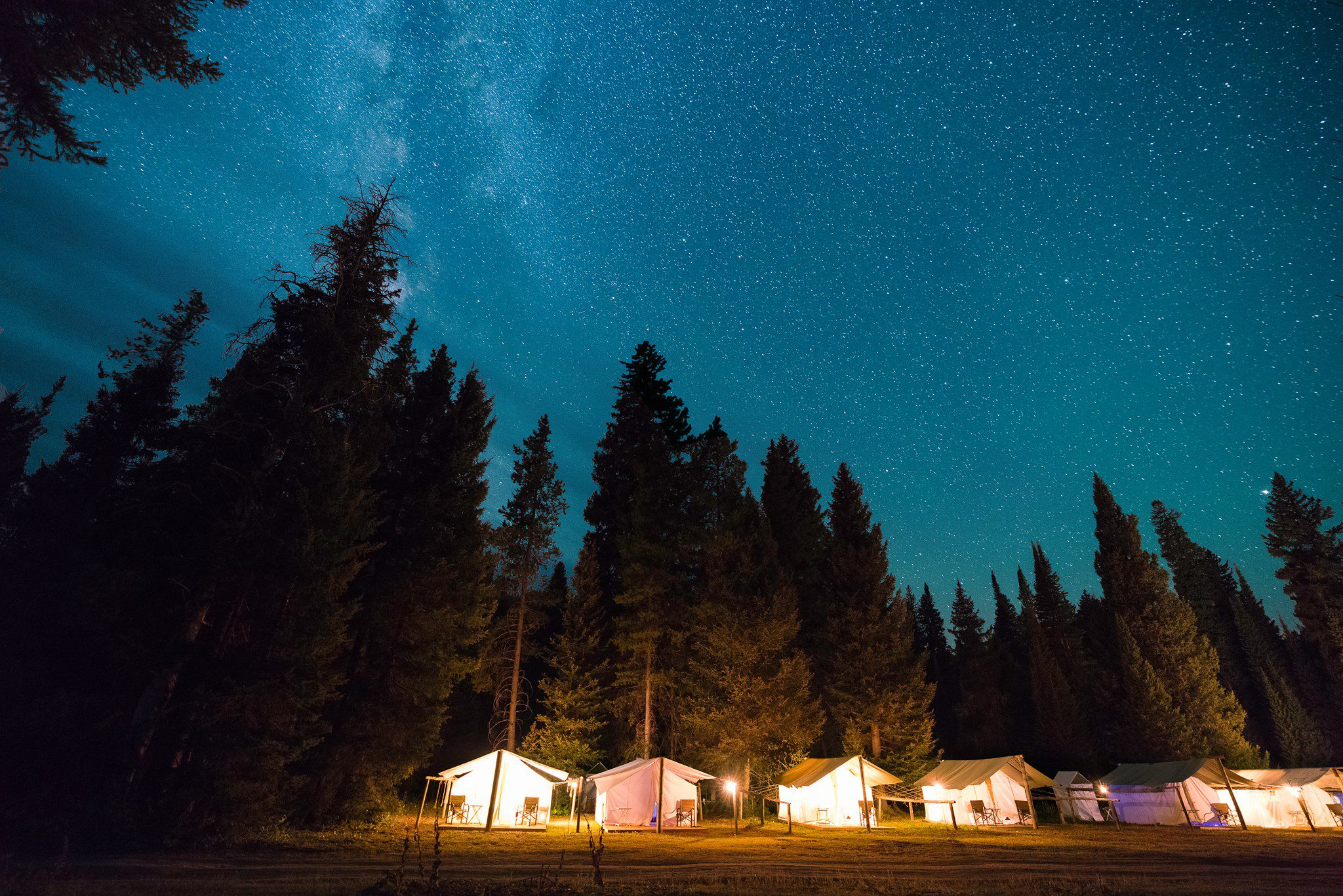 cabins lit at night beneath dark trees and galaxy in the night sky