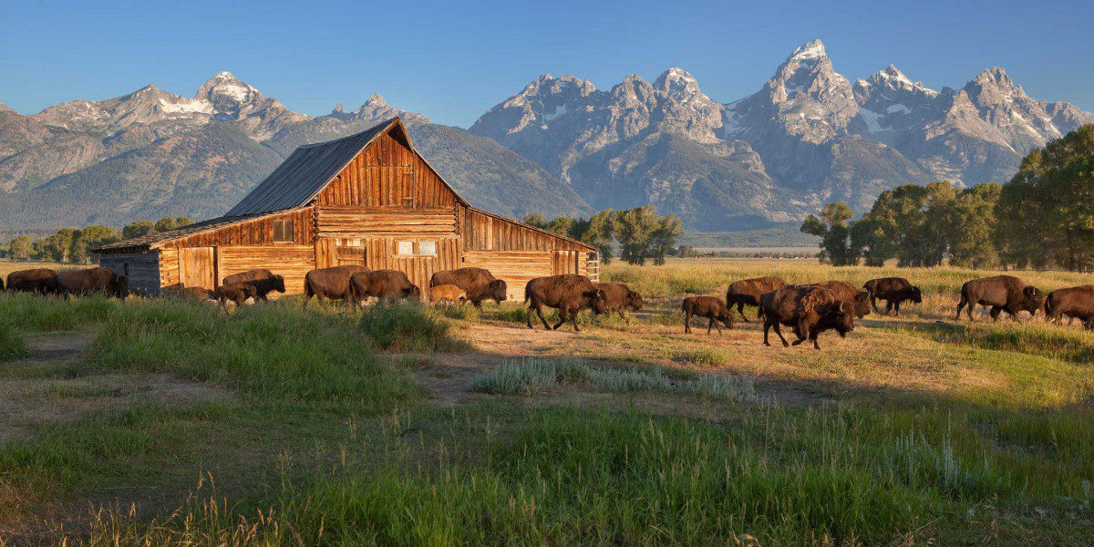 T.A. Moulton Barn in the Tetons