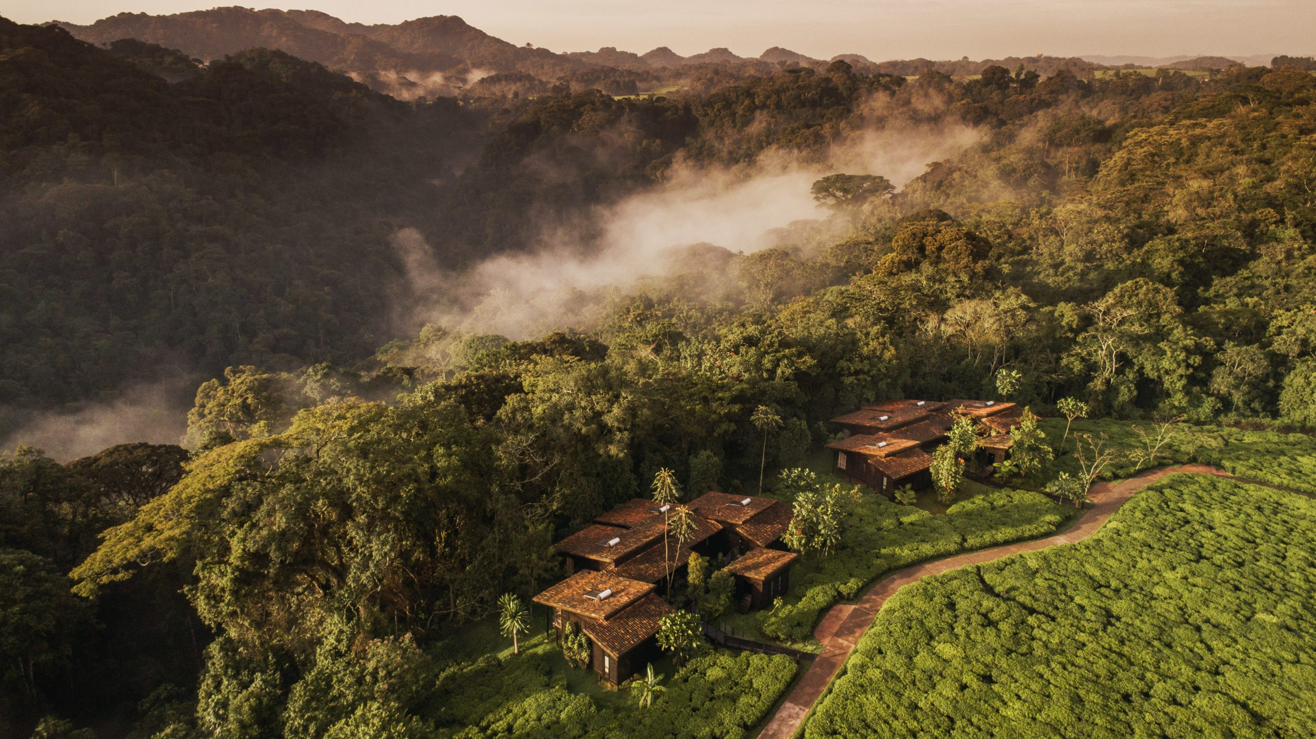 aerial image of Nyungwe Forest Lodge