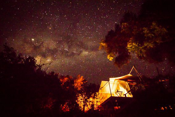milky way galaxy illuminated above linyanti expeditions camp at night