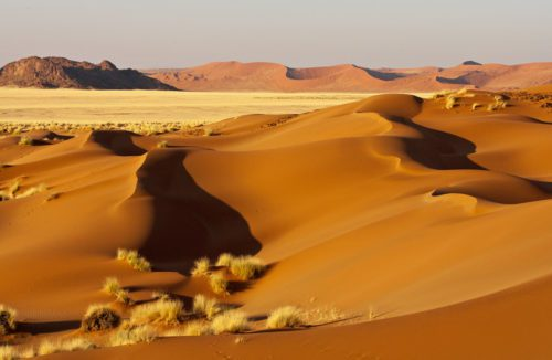 Range of golden Dunes in Sossusvlei