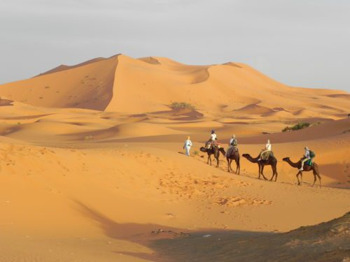 Camel ride in the Sahara is one of many things to do in Morocco