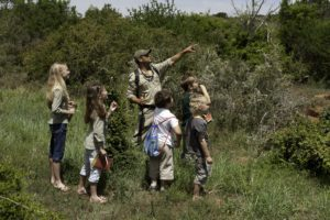 guide on a bush walk with kids at Kwandwe in South Africa
