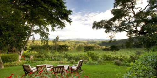 chairs set up in a green field overlooking a view with trees