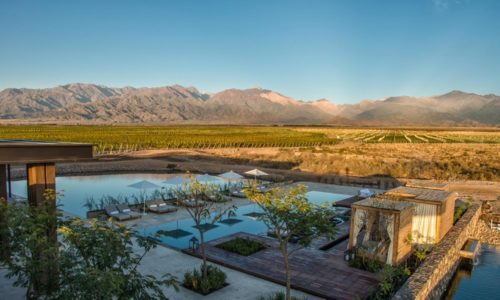 pool at Vines overlooking the andes mountains