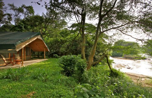 remote tented camp set up under a canopy of trees and along a river in Queen Elizabeth National Park