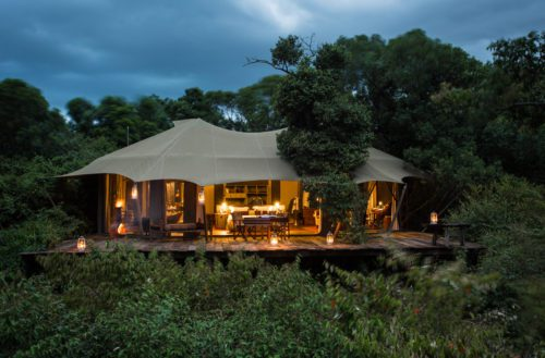 tent at mara plains nestled in the trees and illuminated by kerosene lantern