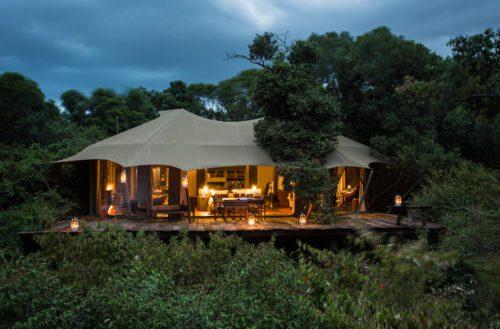 tent at mara plains nestled in the trees and illuminated by kerosene lantern