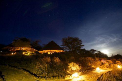 tortilis_nighttime_exterior