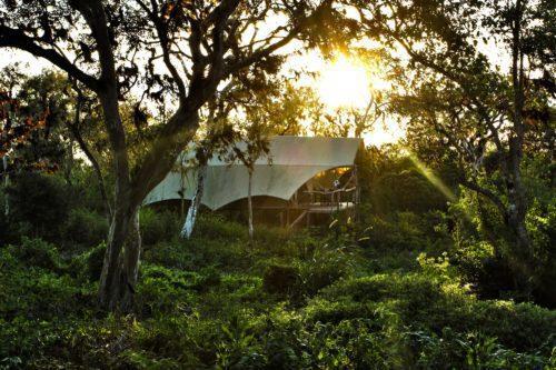 GSC Tents