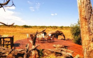 zi-hwa-acc-somalisa-camp-11_jpg_1340x0_default