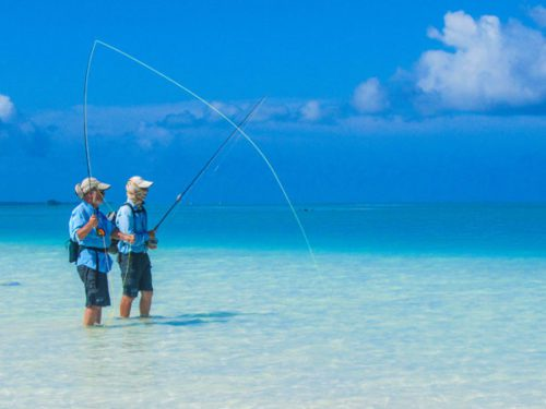 two people fly-fishing at alphonse island in the seychelles in knee-deep water